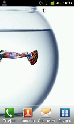 Изображение Guppy aquarium live wallpaper — Живые Обои на телефон
