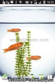 Миниатюра Guppy aquarium live wallpaper — Живые Обои Android