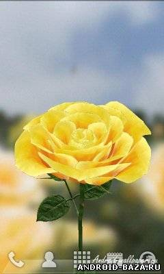 Живые Обои 3D Розы на планшет
