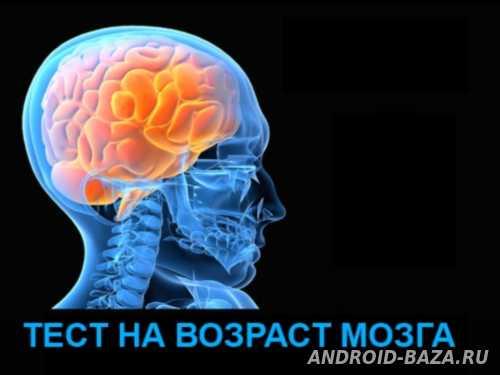 Тест на возраст мозга Скриншот