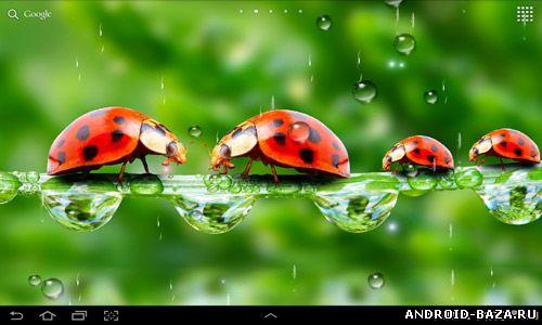 """Живые обои """"Дождь"""". Скриншот 2"""