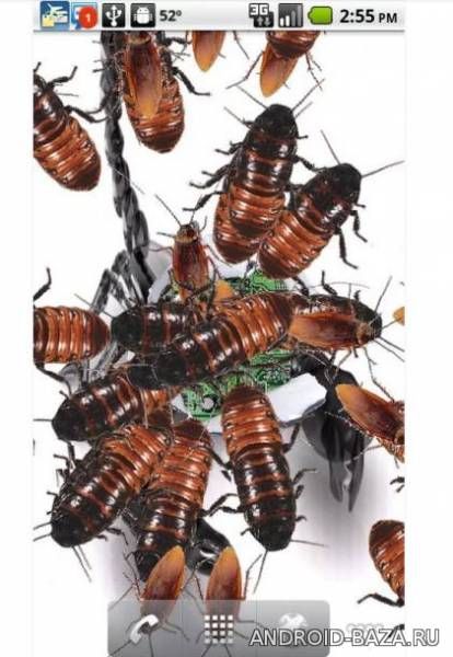Infestation LW - Тараканы на телефон