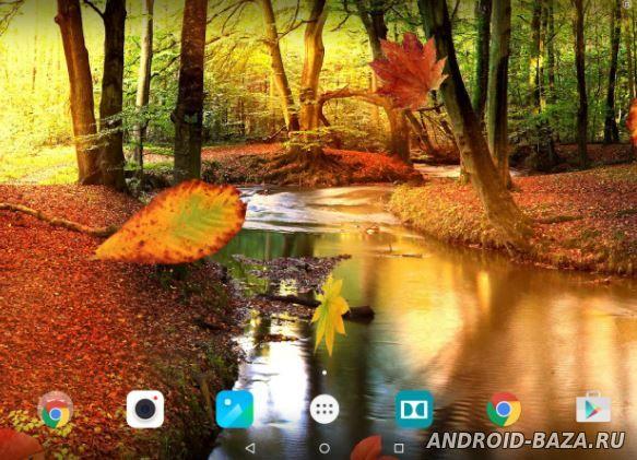 Осенний Лес - Живые Обои на телефон