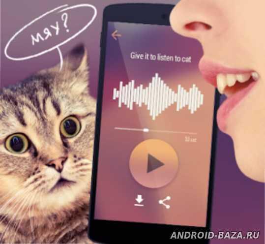 Кошачий переводчик андроид