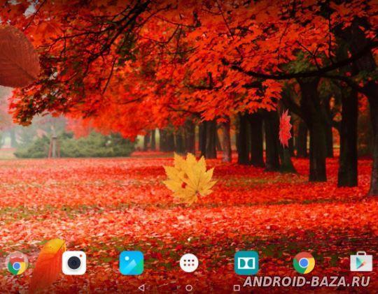 Осенний Лес - Живые Обои на планшет