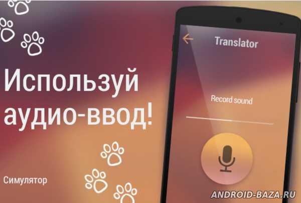 Кошачий переводчик на планшет