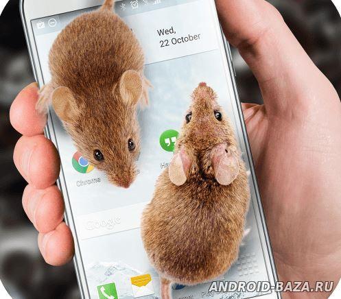 Мышь на экране