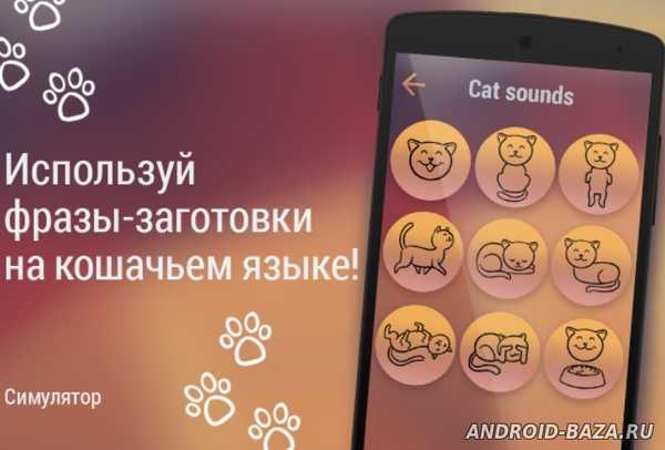 Кошачий переводчик на телефон