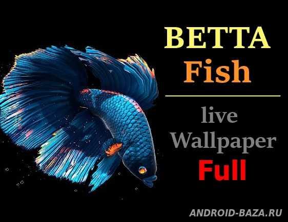 Betta Fish Live Wallpaper Full Скриншот