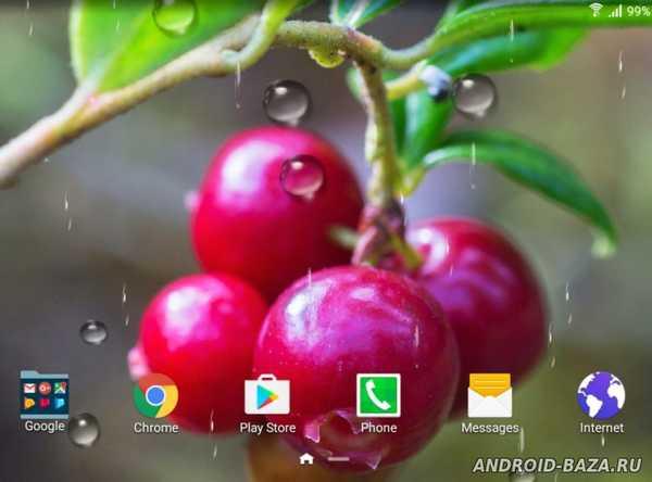 Ягоды - живые обои на планшет