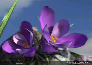Весенние цветы 3D на планшет
