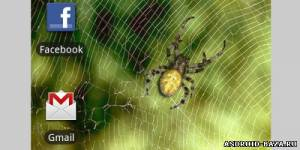 "Spider — Живые Обои ""Паук"". Скриншот 2"