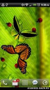 Friendly Bugs Live Wallpaper на планшет