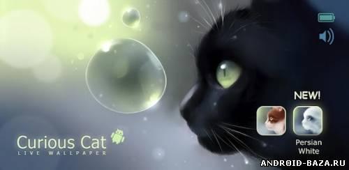 Curious Cat Live Wallpaper — Живые Обои с Кошкой андроид