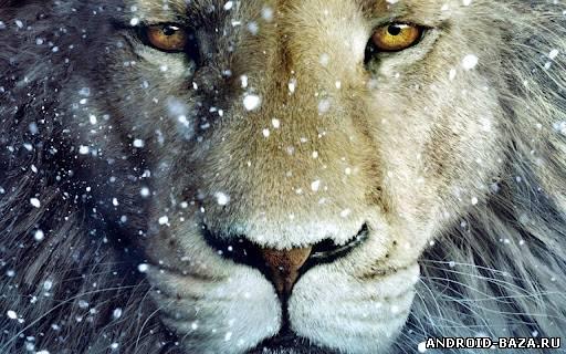 Super Touch Amazing Lion