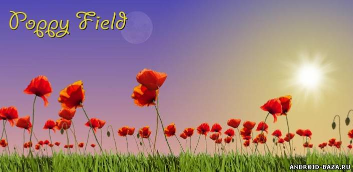 Приложение Poppy Field Live Wallpaper — Живые обои андроид
