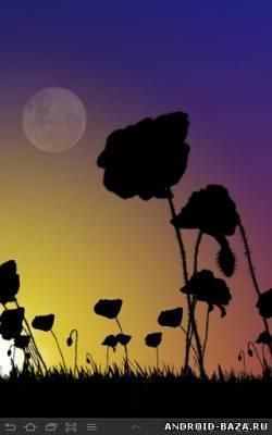 Poppy Field Live Wallpaper — Живые обои на планшет