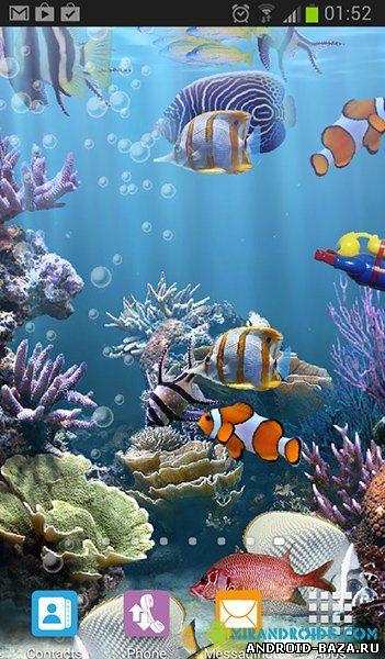 Настоящий аквариум - HD на планшет