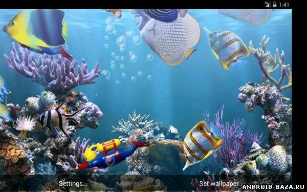 Настоящий аквариум - HD на телефон