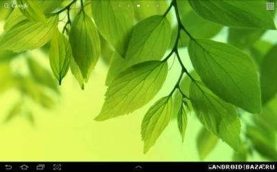 Galaxy S4 - Плавающие  Листья. Скриншот 2