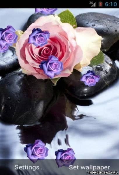 Роза на воде. Скриншот 3